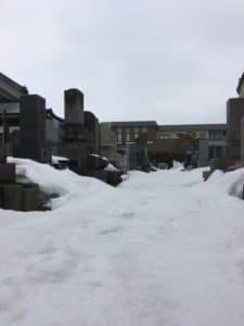 墓地はまだ雪の中!